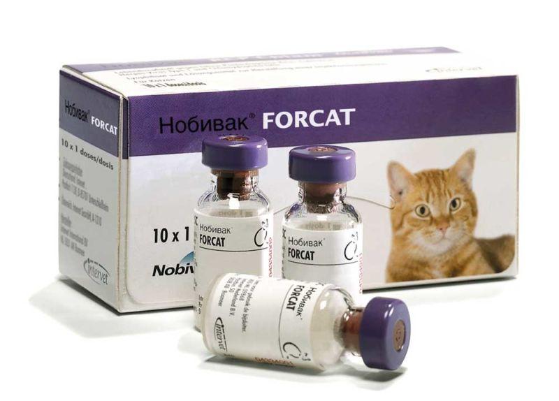 Нобивак для кошек инструкция