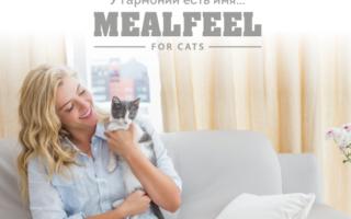 mealfeel корм для котов