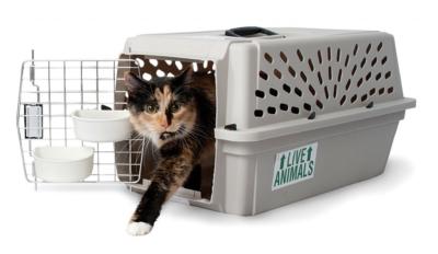 Пластиковый бокс-переноска для кошек