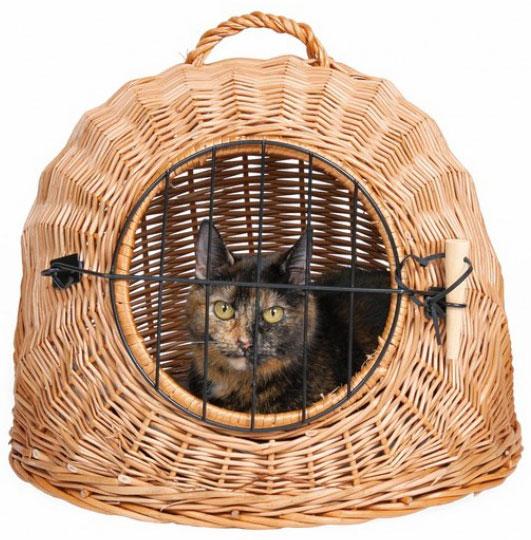 Плетеная переноска для кота